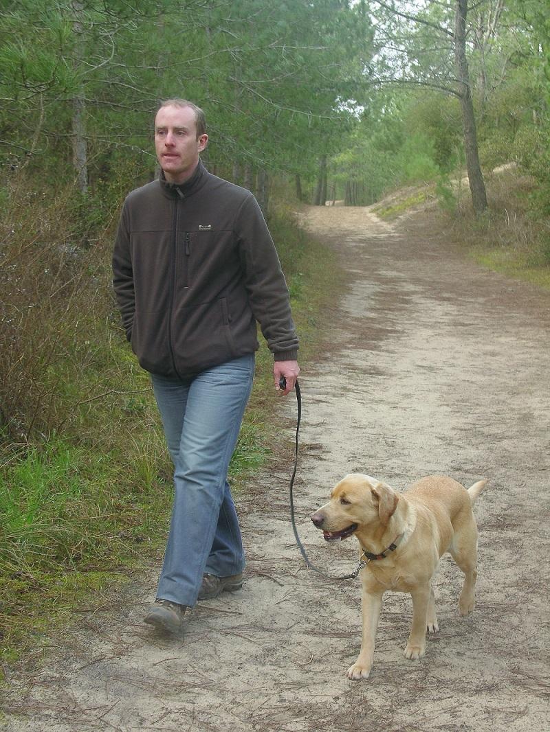 Promenades et dressage canin à la roche sur yon - Chien au